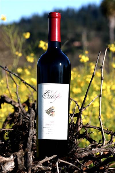 wineplus13l