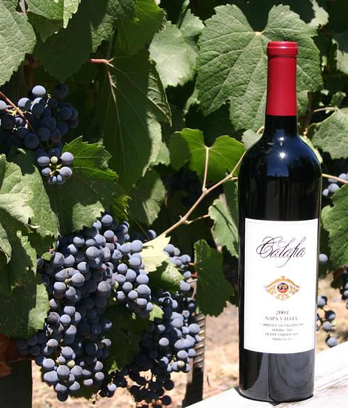 wineplus1l